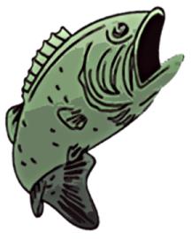 STVFDFish
